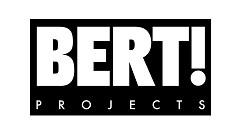 Bert Projects